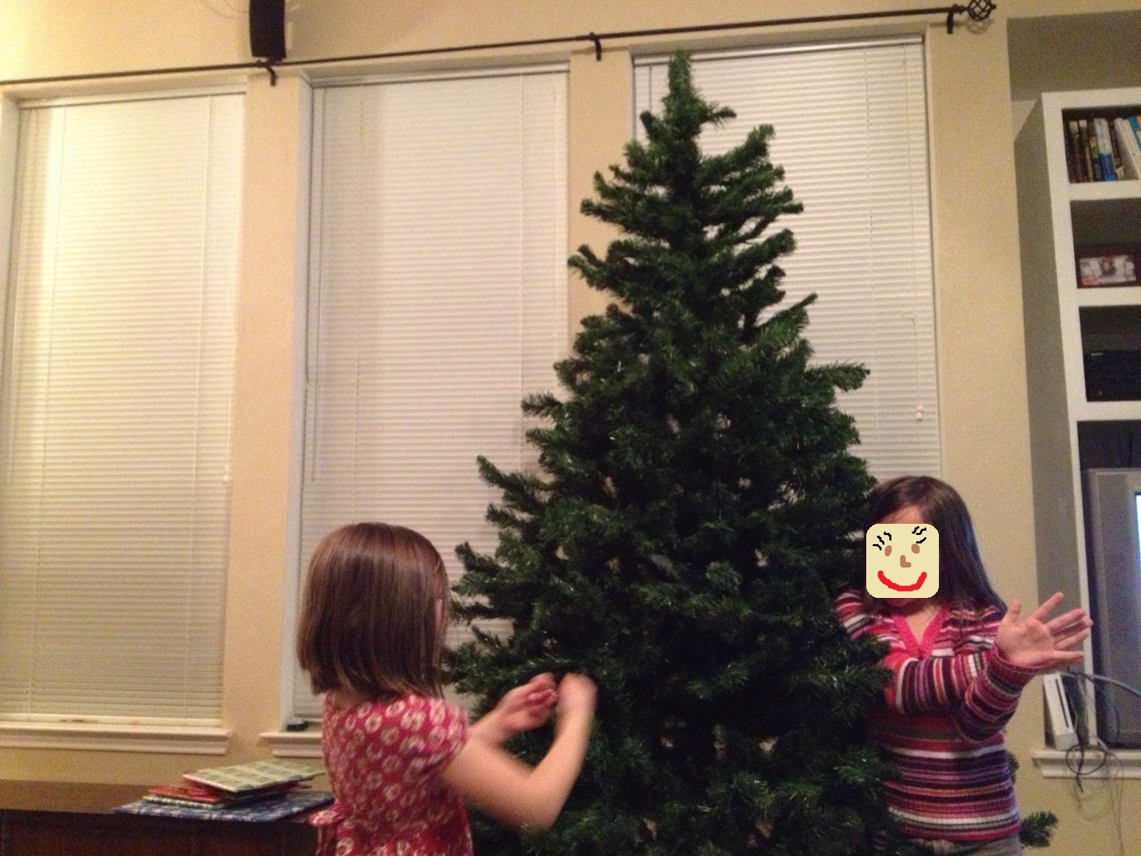 Decorate the christmas tree fa la la la - One Child Is All Fa La La La La I Didn T Hear Mom Say We Couldn T Decorate The Tree Until Wednesday And Gracie Do You Know What She S Doing